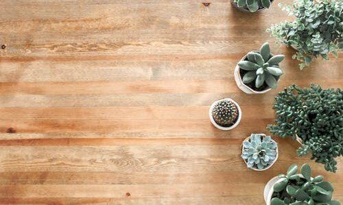 Bambusgulve – bæredygtigt for både møbler og klima